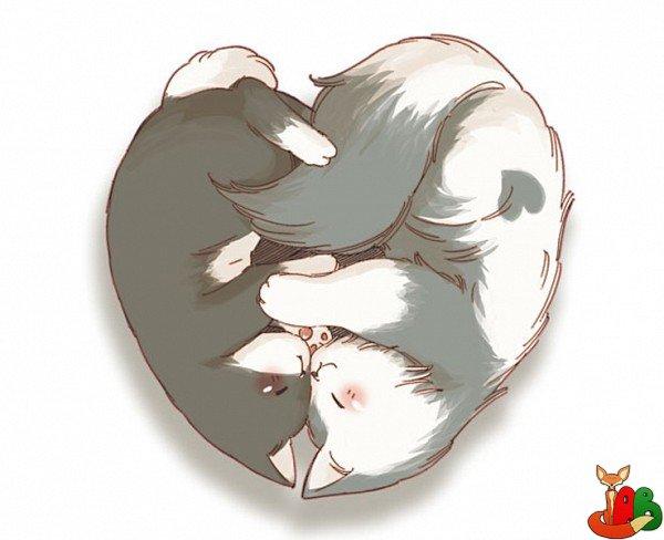 Картинки милые коты аниме